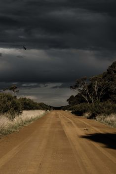 On the road at Wallbrook farm in Western Australia - photography by Kate Ballis