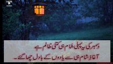 """December Ki Yeh - """"December Sad Poetry in Urdu"""": OnlineUrduPoetry Famous Poets, Urdu Poetry, December, Sad, Messages, Reading, Famous Black Poets, Reading Books"""