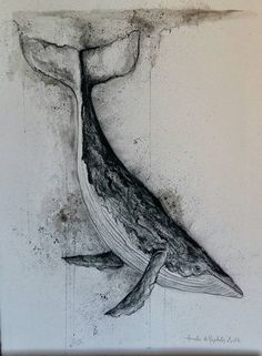 Baleine fusain et aquarelle Whale made with charcoal, ink and watercolor. Watercolor Animals, Watercolor Paintings, Watercolor Whale, Animal Drawings, Art Drawings, Whale Drawing, Whale Tattoos, Whale Art, Ocean Art