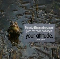 Dennis S. Brown #Attitude, #Difference