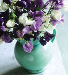 A beautiful collection of Amethyst coloured sweet peas, especially selected by Sarah for their scent and productivity, available as seeds or plants.