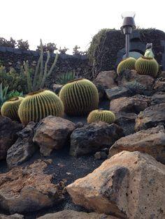Jardim de cactos em Lanzarote