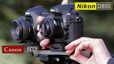 Canon 5D Mark III vs Nikon D800 Comparison