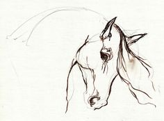 Horse Sketch Painting - Horse Sketch Fine Art Print