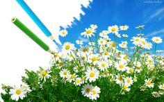 Rumiamki, Kredki, Niebo, Wiosna
