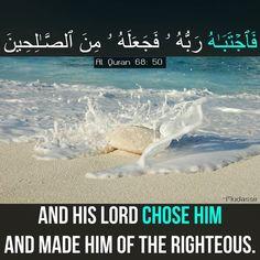 #an_ayah_a_day  #anayahaday #quranquotes #quranverses #quranlines #islam #allahuakbar #allah #deen #surah #anayahday  #muslimquotes #islamicquotes #mohammedsaw #lord #hadeeth #prayer #salah #jannah #inspirationalquotes #dawah #hijab #muslimah #ummah #reminder #makkah #medina #religion #quraan #muslimahreminder