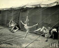 vintage everyday: Daily Life of Circus Girls in Sarasota, Florida ...