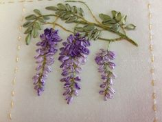 CLOSE UP OF WISTERIA FROM GARDEN PARTY