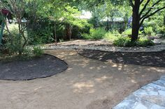 Creative Lawn Alternative | Diana's Designs Austin Lawn Alternative, Dry Garden, Paths, Garden Ideas, Sidewalk, School, Creative, Design, Side Walkway