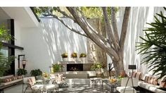 Patio with tree