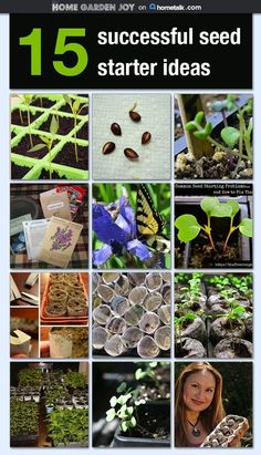 15 terrific ideas to save money and get more from your garden seed starting projects.