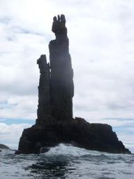 A view during Bruny Island cruises-Tasmania