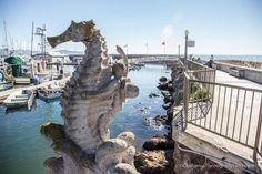 Scenic walk around the Santa Barbara harbor. Sit on rocks...admire the boats...stay curious about brophy boys.