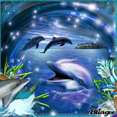 I Dolphins 3 Water Animals, Animals And Pets, Baby Animals, Dolphin Photos, Dolphin Art, Orcas, Dolphin Coloring Pages, Special Wallpaper, Dolphins Tattoo