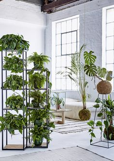 A guide to indoor gardening. Visit houseandleisure.co.za for more