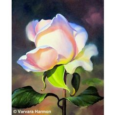 Rose by Varvara Harmon – Harvest Gold Gallery