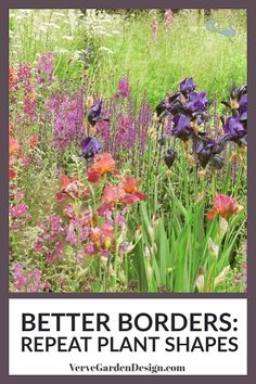 Design Better Garden Borders Using Repetition — Verve Garden Design - When we first look at a scene such as a garden border, there is a bit of a hierarchy in what we perceive first. Usually it is the outlines of familiar shapes that we notice first. Starting Plants From Seeds, Starting Seeds Indoors, Seed Starting, Plant Texture, Herbaceous Border, Border Plants, Flower Garden Design, Garden Borders, Climbing Roses