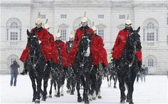 Horseguards in the snow, London. #horses #snow #royals