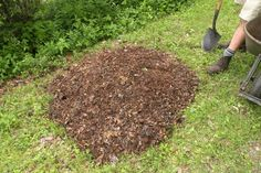 To off the compost pile with a wheelbarrow load of mulch. We have lots of old wood chips around the garden, so we use these. You might also consider using grass clippings or leaves.