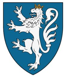 House of Nassau-Dillenburg - WappenWiki Armenia, Medieval Shields, Lion Design, Banner, Scroll Pattern, Family Crest, Nassau, Coat Of Arms, Military History