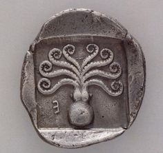 Greek coin, c 500-480 BC with octopus.