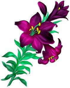 цветы,flores,flowers,bloemen,png