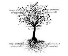 Google Image Result for http://www.visionbedding.com/cached_images/large/VB_Large_9361187_tK5ELXSPtdflD87LqPC39bn4eMu3Bf9v.jpg