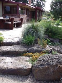 Landscaping Lessons-Proper Placement Of Trees In Landscape Design Rockery Garden, Bush Garden, Dry Garden, Gravel Garden, Garden Steps, Xeriscaping, Garden Paths, Australian Garden Design, Australian Native Garden