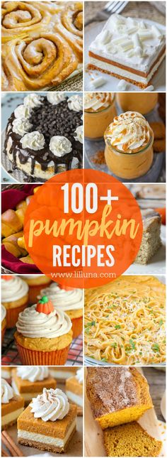 The BEST Pumpkin Recipes collection - from sweet to savory, this collection has loads of pumpkin dessert, breakfast, bread and pasta recipes to try.