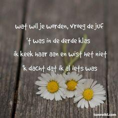 toon hermans spreuken 52 beste afbeeldingen van Toon Hermans   Poems, Poetry en Dutch quotes toon hermans spreuken