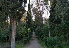 Η φασαρία της ησυχίας Feng Shui, Country Roads, Deco, Garden, Flowers, Garten, Lawn And Garden, Decor, Gardens