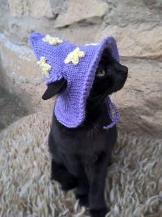 Purple Wizard Cat Hat Wizard Hat for Cat Wizard Hat for Cats Costume for Cats Hats for Cats Halloween Cat Costume Cat Accessories Animals Costume Chat, Pet Costumes, Kitten Costumes, Pretty Cats, Cute Cats, Wizard Cat, Cat Aesthetic, Cat Hat, Cat Accessories
