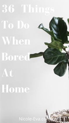 When boredom strikes don't be a victim to it! Counter it with a list of 36 unique things to do when bored Good To Know, Feel Good, Bored At Home, Things To Do When Bored, Boredom Busters, So Creative, Take Care, Lifestyle Blog, Counter