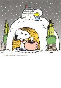 Snoopy and Woodstock With Condo-Style Igloos Woodstock Peanuts, Peanuts Snoopy, Snoopy Images, Snoopy Pictures, Peanuts Christmas, Charlie Brown Christmas, Xmas, Charlie Brown Und Snoopy, Mickey Mouse