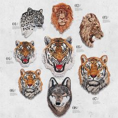 3.28 ** 8Designs Cute Animals Tiger Leopard Wolf Lion Patches Embroidered Iron on Patch Badge Appliques For DIY Clothes Dresses