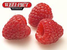 Well Pict Raspberries: Fresh, Full-Sized & Flavorsome - Always! Raspberries, Wellness, Fresh, Beauty, Food, Essen, Raspberry, Meals, Beauty Illustration