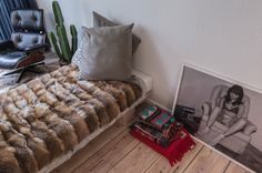 fur throw and cactus SteveHerud - desire to inspire - desiretoinspire.net