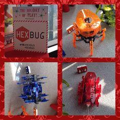 Play time with HEXBUG VEX Robotics