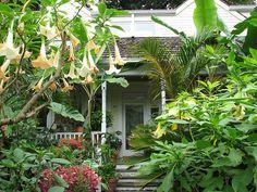 Best Tropical Landscape Design Small Garden Pocket Garden 640 x 480