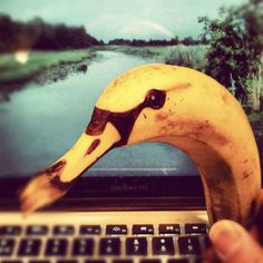 Adorable Banana Doodles - This Father Knows How To Keep His Daughters Entertained of 17 Pics) Eat Fruit, Fruit Art, Photomontage, Banana Art, Go Bananas, Doodles, Pen Shop, Food Gallery, Mouth Watering Food