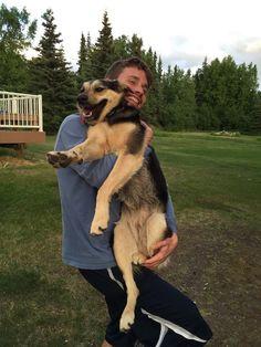 My uncle adopted this former Russian guard dog. He warned me not to get too close http://ift.tt/2w1pMZt