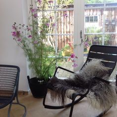 Outdoor for indoor. Too cold outdoor... So just moved the pinkie flowers and Luxembourg rocking chair inside my studio. #luxembourg #Fermob #houseoflawson #flowers #indoor #outdoor #autumn #stoltekavalere#