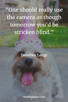 """One should really use the camera as though tomorrow you'd be stricken blind."" -- Dorothea Lange"