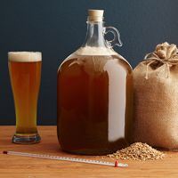 All You Need To Know | Home Beer Brew