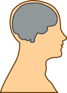 Medical Diagram Of Brain clip art - vector clip art online ...