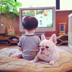 They watch TV together. | Japanese Boy And His French Bulldog Are The World's Cutest Friends Ever