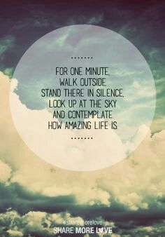 For one minute, walk outside. Stand there in silence. Look up at the sky and contemplate how amazing life is.
