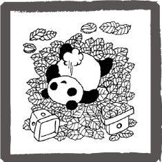 アンアン・ミニコミで連載していたパンダの絵  <byパンツ屋エディ>  1976年5月20日号掲載