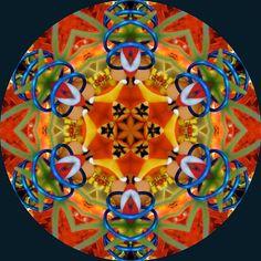 Amazing kaleidoscopes by judithpaulscopes on Etsy. Fractal Art, Fractals, Kaleidoscope Images, Mandala Art, Mandala Meditation, Sacred Geometry, Geometric Shapes, Rainbow Colors, Unique Art