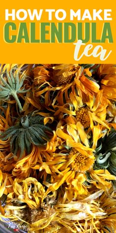 Calendula tea is a great way to get all the amazing medicinal and healing benefits of calendula. Learn how to make calendula tea and how to use it to support your natural health and skin care rountines Wellness Tips, Health And Wellness, Health Tips, Calendula Tea, Homemade Tea, Brewing Tea, Tea Blends, Alternative Health, Herbal Medicine